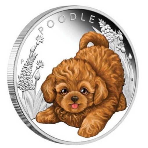 """Сребърна монета """"Кученца - Пудел"""""""